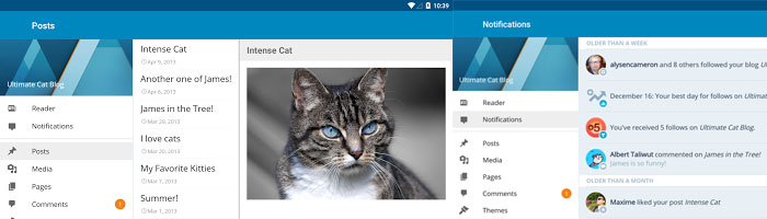 wordpress-app-image